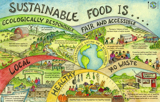 Food resilience is a vital part of making the transition to more sustainable communities.