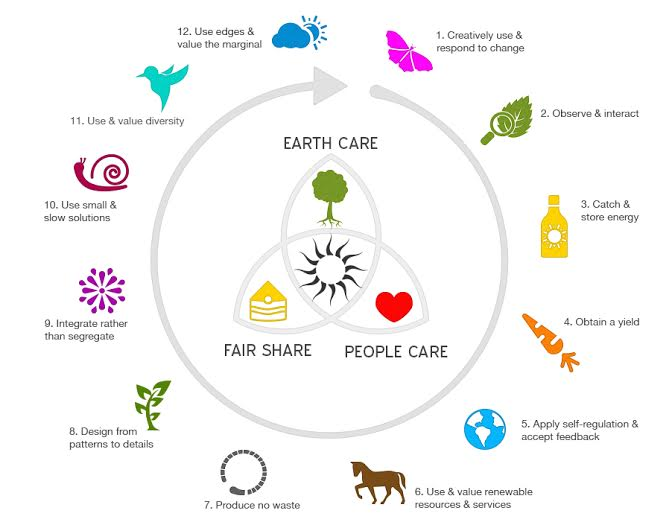 permaculture_light_graphic